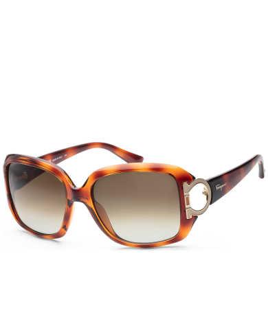 Ferragamo Women's Sunglasses SF666S-238