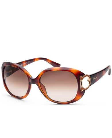 Ferragamo Women's Sunglasses SF668S-238
