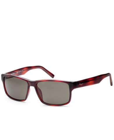 Ferragamo Women's Sunglasses SF960S-214