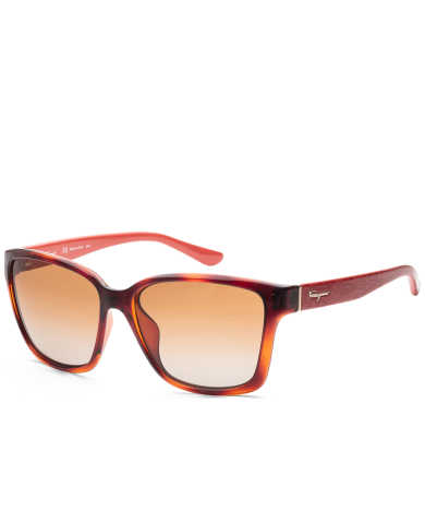 Ferragamo Women's Sunglasses SF716S-5816207